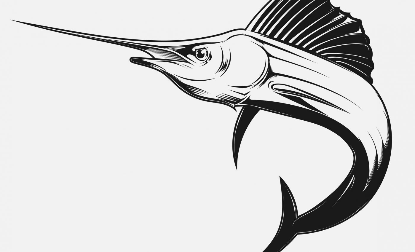 Swordfish Illustration