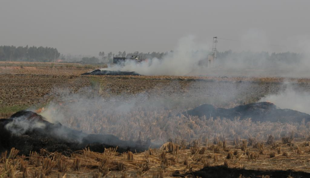 intense agricultural fires and smoke in Northwest India