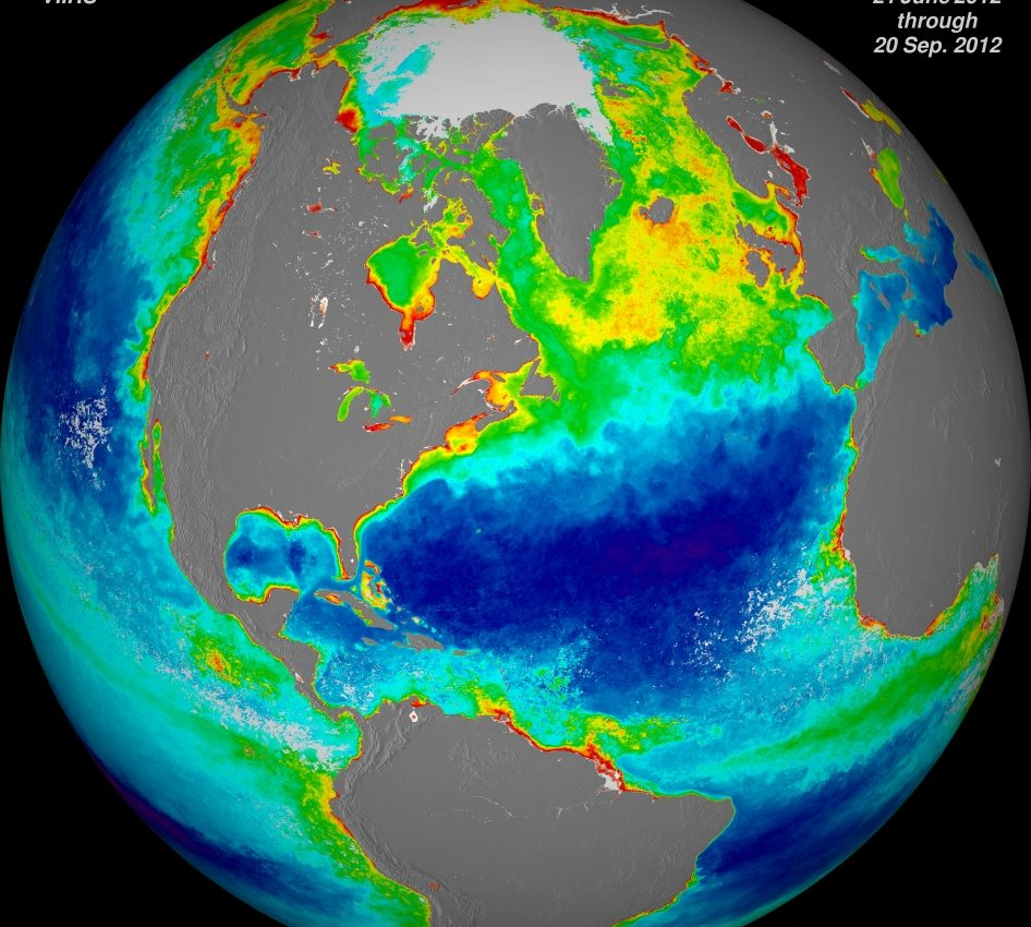 Ocean Chlorophyll Concentrations (Northern Hemisphere)