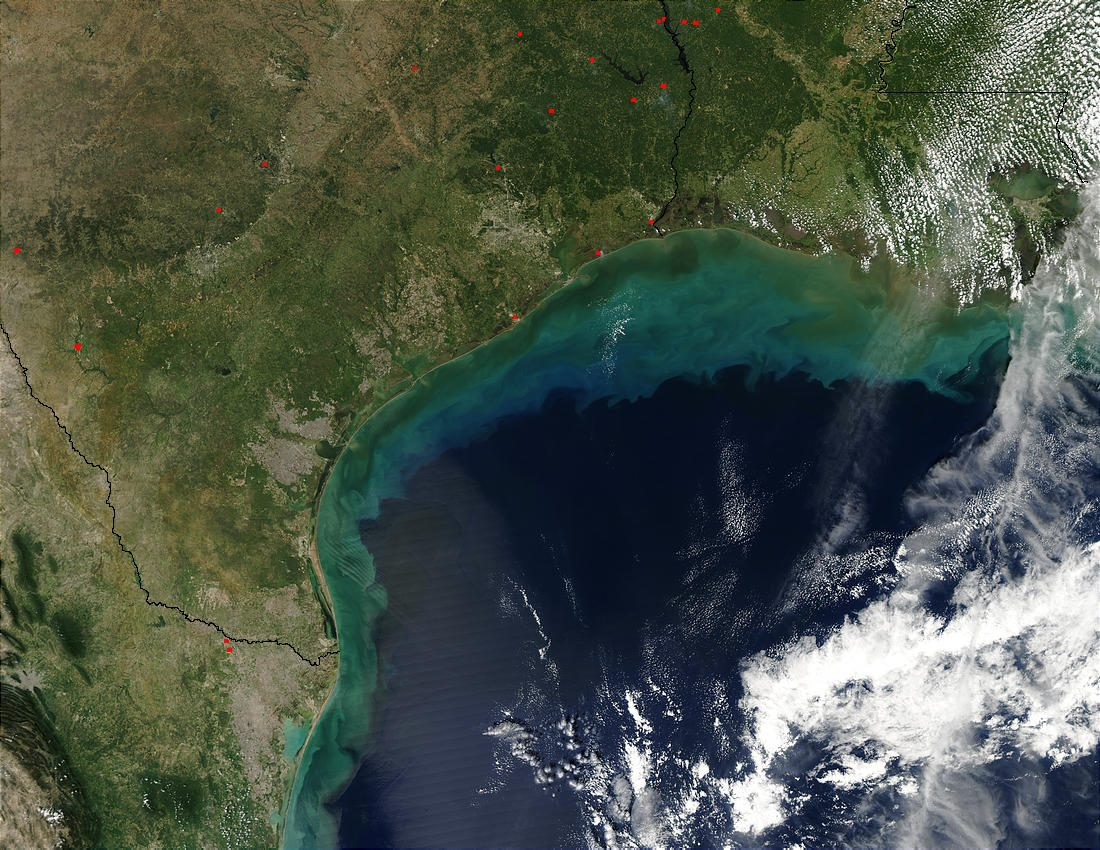 Sediments in Gulf of Mexico