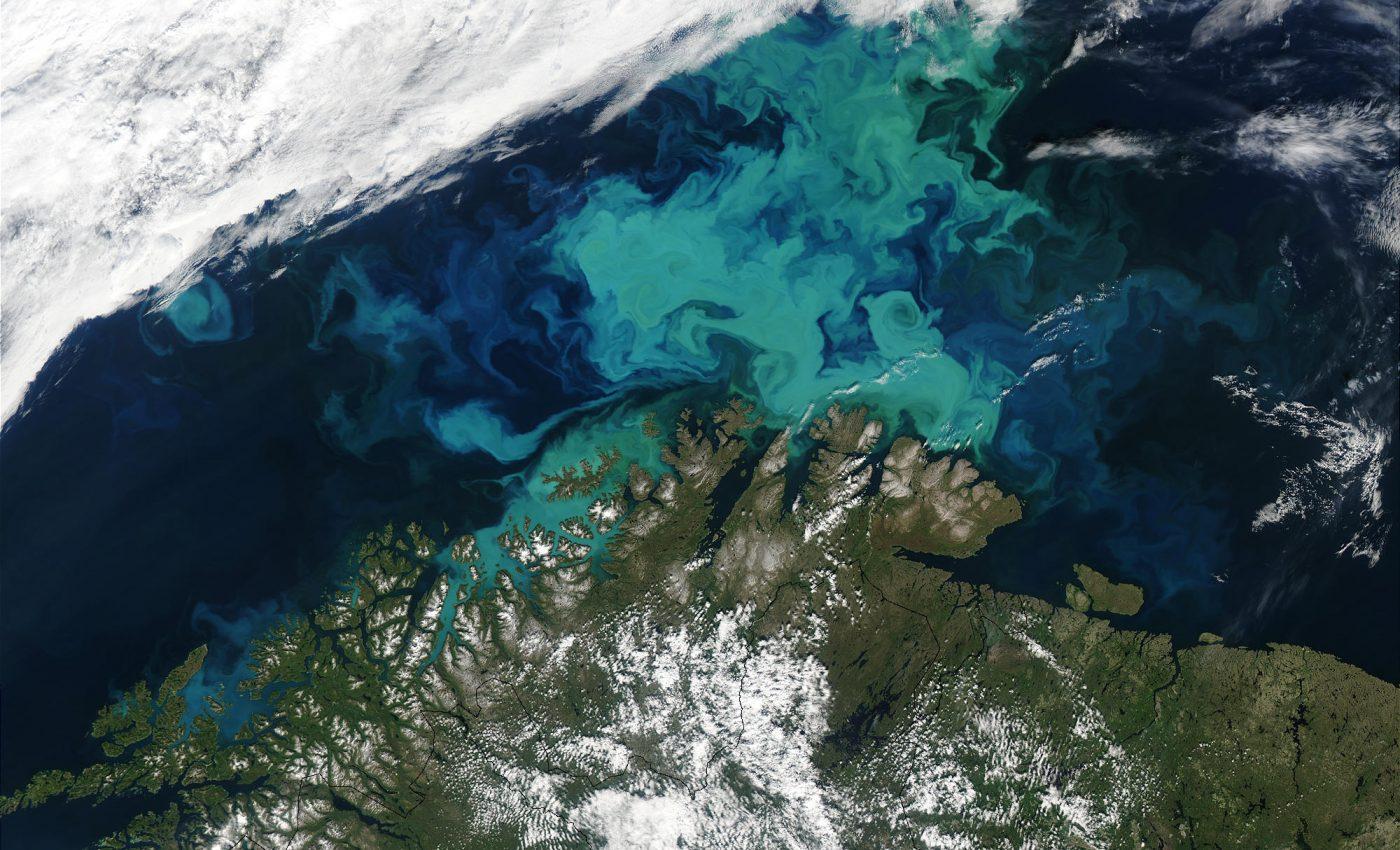 Phytoplankton Bloom off Norway