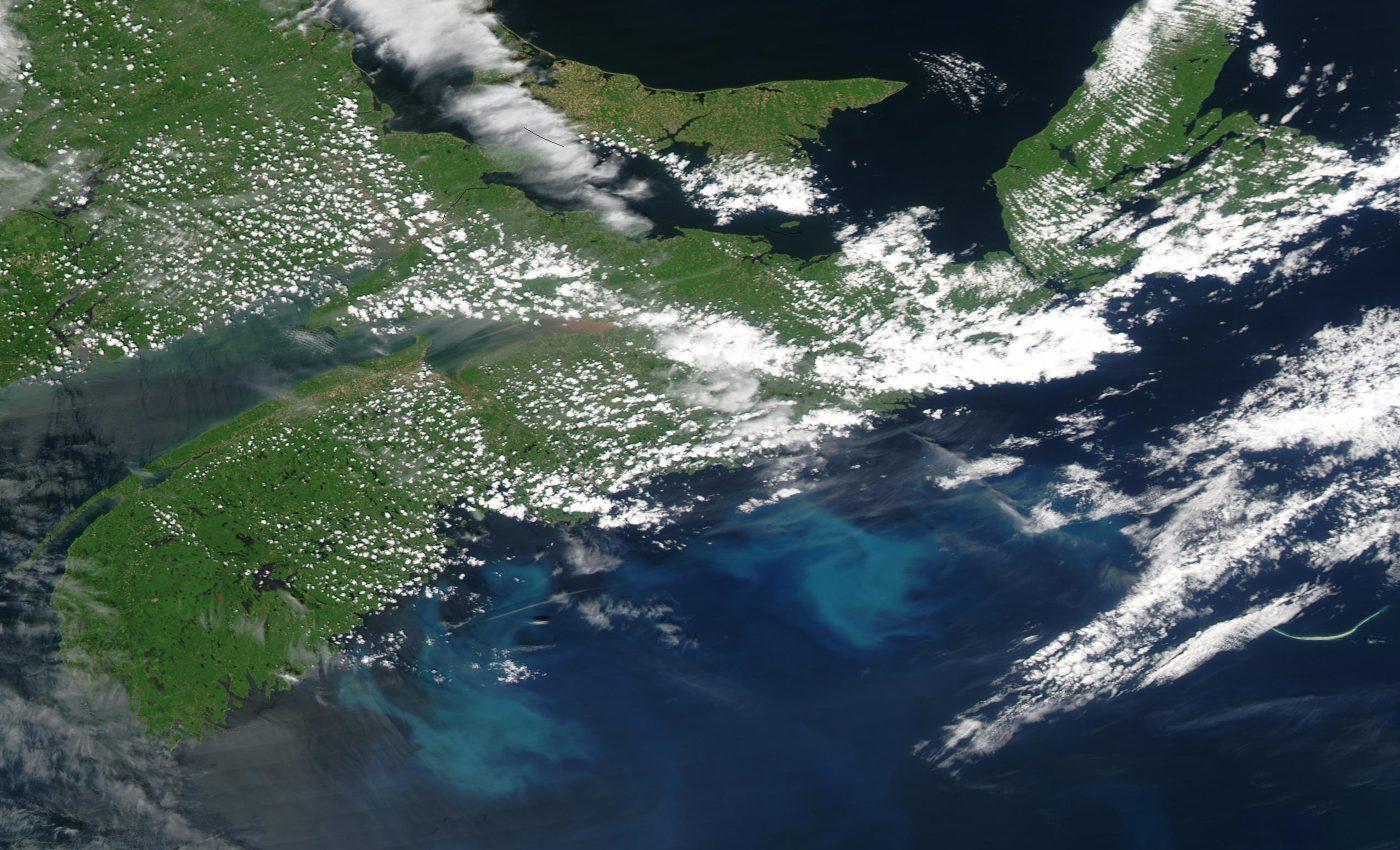 Phytoplankton Bloom off Nova Scotia