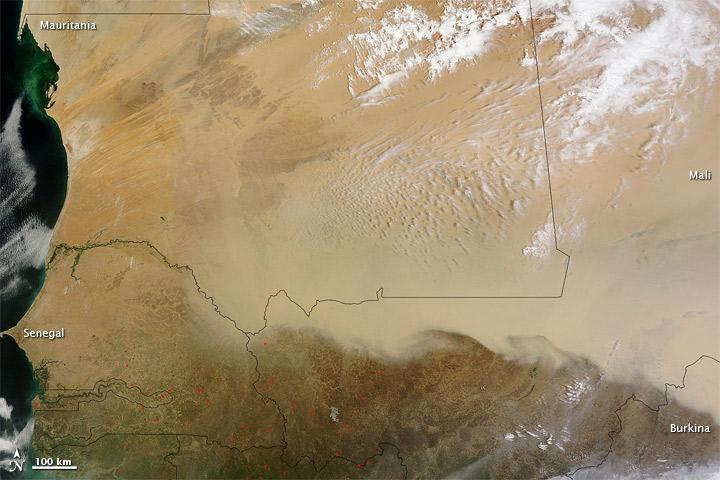 Dust Storm in the Saharan Desert