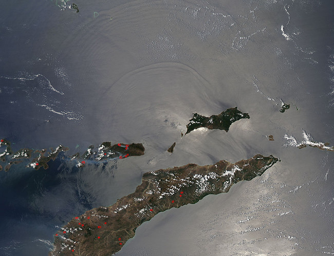 Internal Waves in the Celebes and Banda Seas