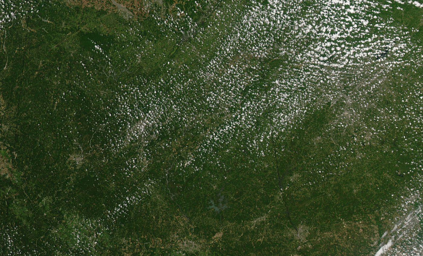 Tornado Tracks in Tuscaloosa, Alabama