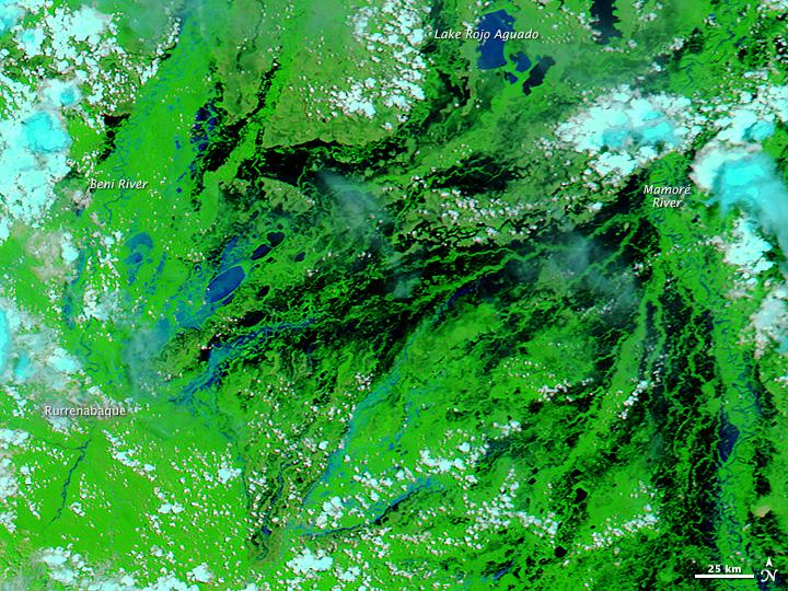 Flooding in Bolivia in False Color