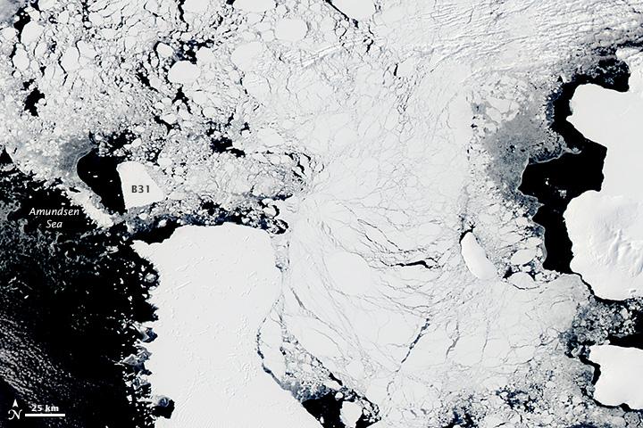 Iceberg B31 Heads West