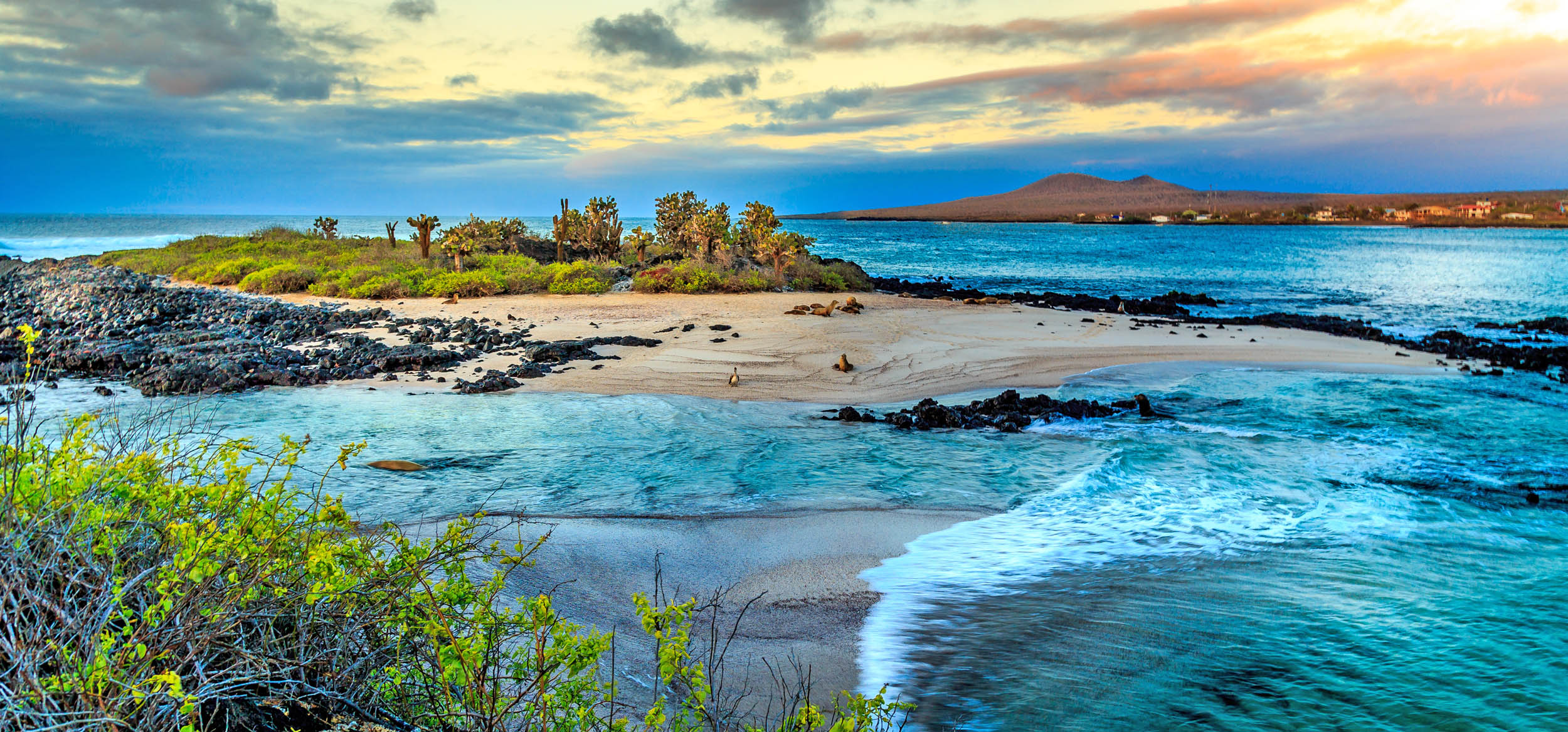 ecotourism in the galapagos islands costa Reserve your spot on a lindblad expeditions cruise to the galapagos islands today explore the undersea on our galápagos channel islands, california costa.