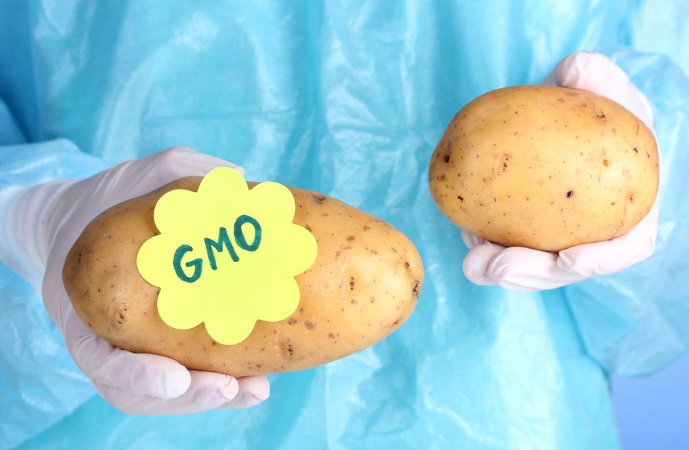 Genetically engineered potatoes have been approved by U.S. Dept of Agriculture: J.R. Simplot Co.'s disease-resistant Ranger Russet and Innate potatoes.
