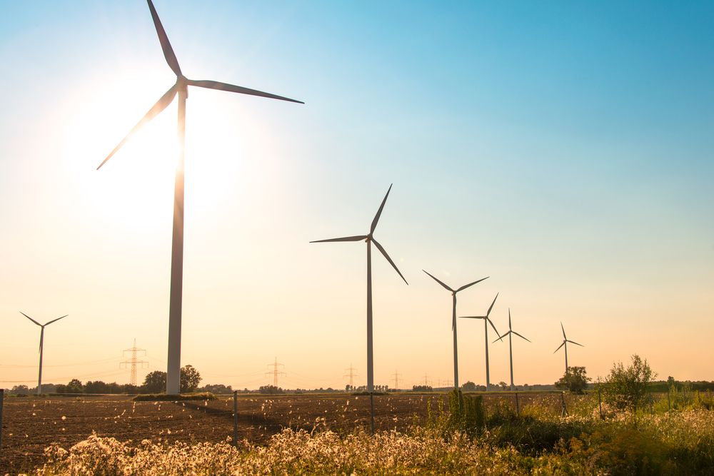Wind farm benefits & hazards analyzed by recent report. Since their inception and throughout their implementation, wind farms have always courted controversy.