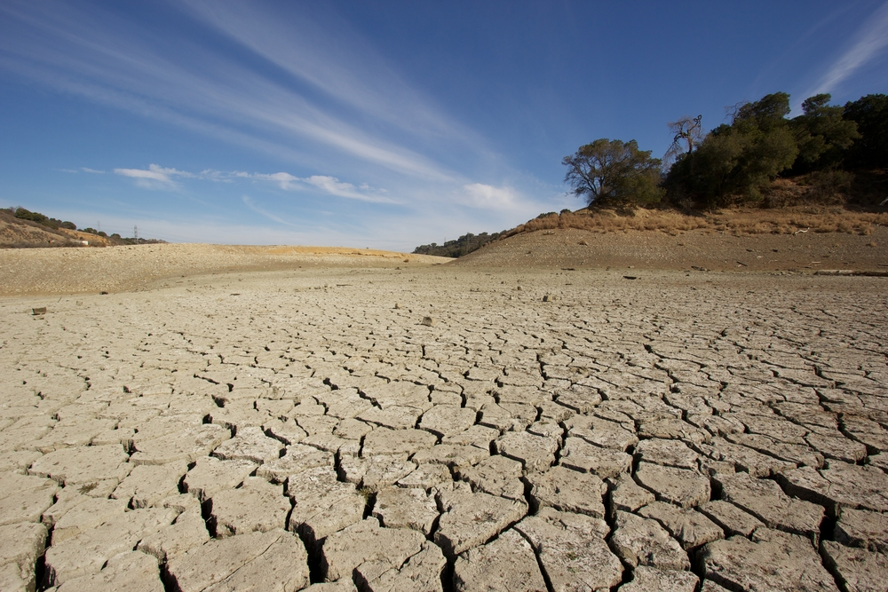 California Drought Is Changing The State S Landscape