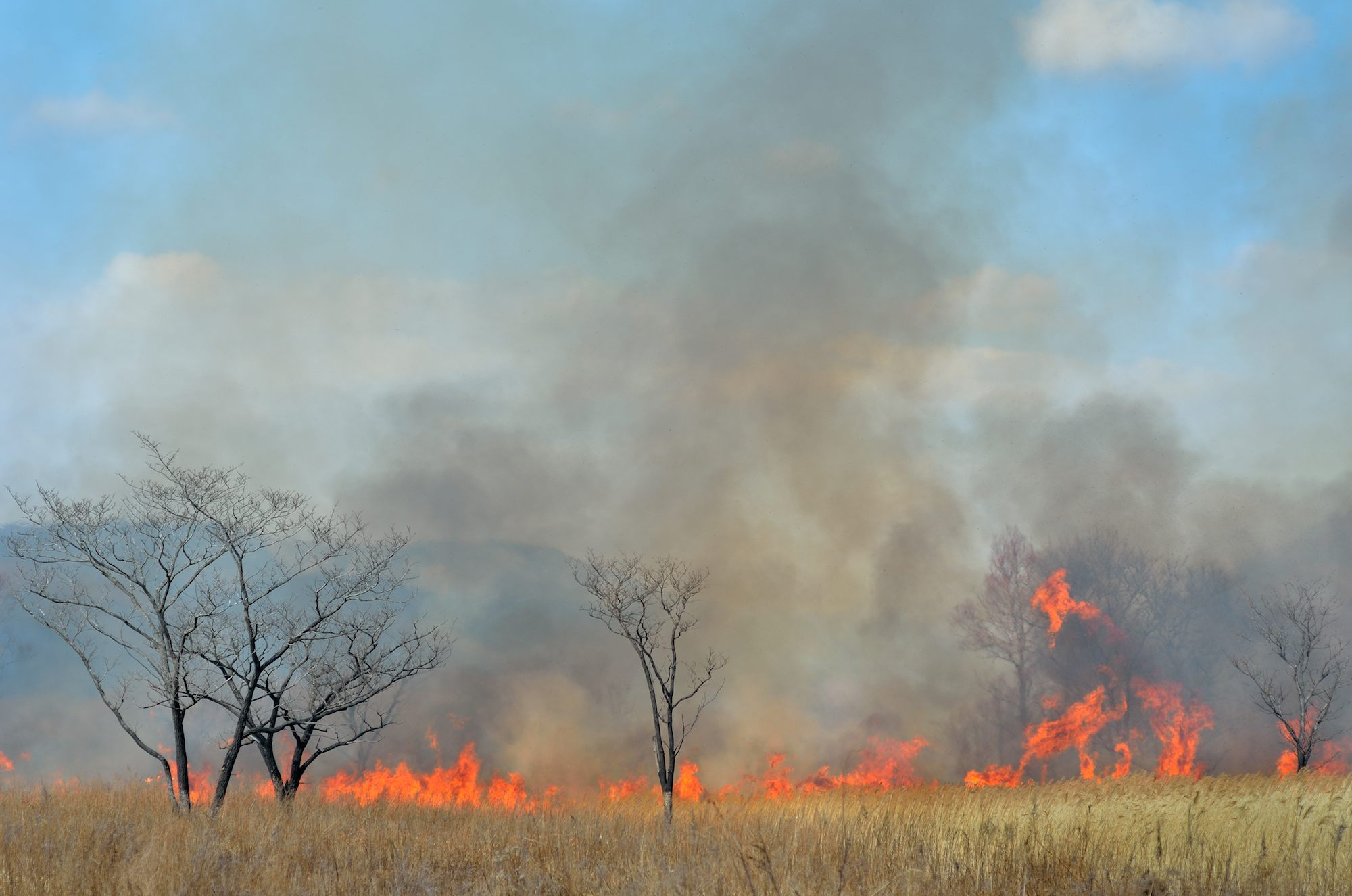 Australian climate change extreme weather risks identified: more wildfires, heat waves, fewer but stronger storms, increased flooding in coastal areas.