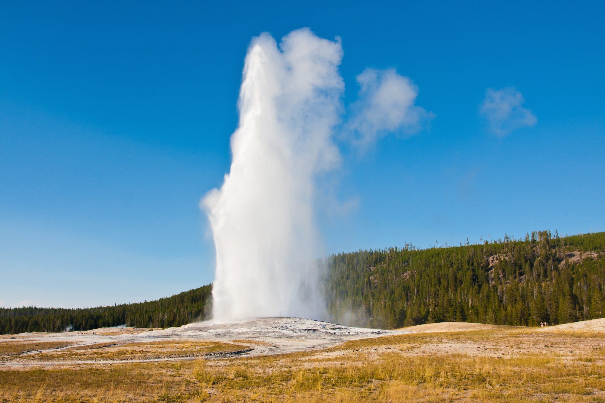 Yellowstone National Park could be in danger, says new report.