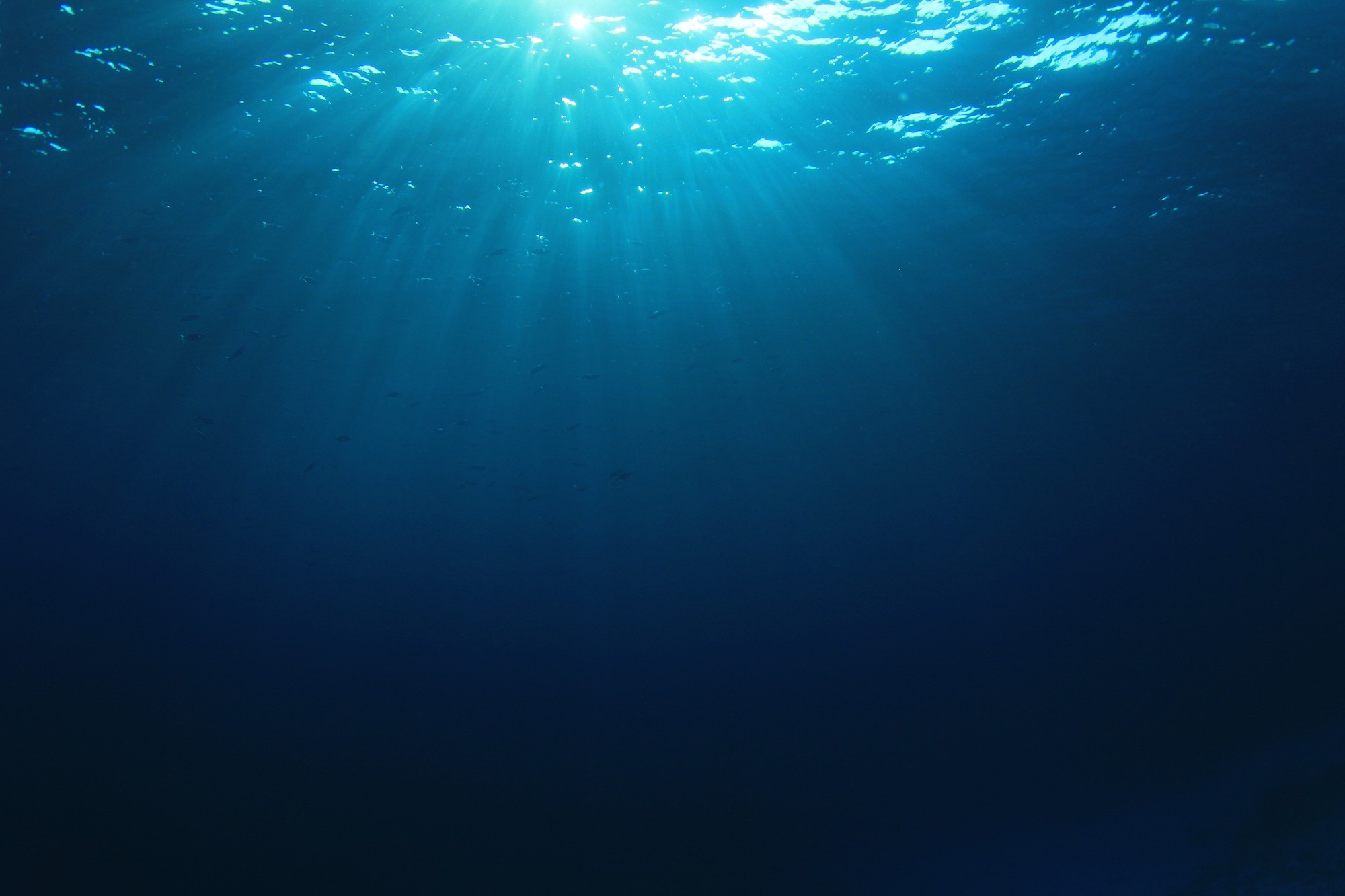 Britain's first wave farm to launch in 2018: a new source of clean energy in the country's first-ever underwater wave farm.