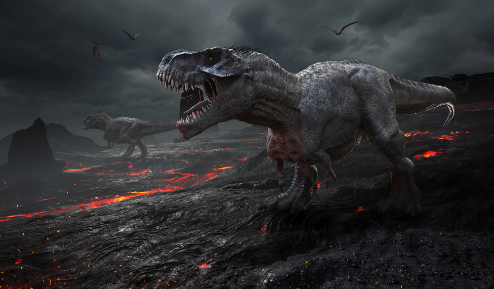 Leftovers from insect meals in South America are offering up new information about the mass extinction event that killed the dinosaurs.
