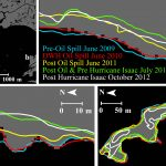 Louisiana shoreline lost from Deepwater Horizon oil spill
