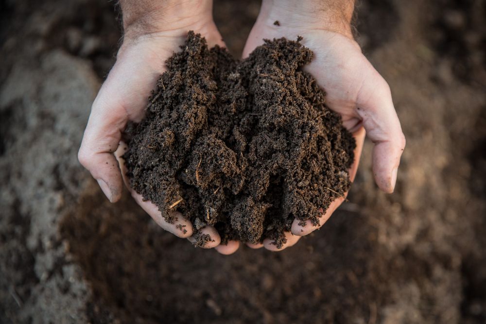 Water balance found to influence soil pH and fertility. Even casual fans of nature and environmental science understand that the pH level.