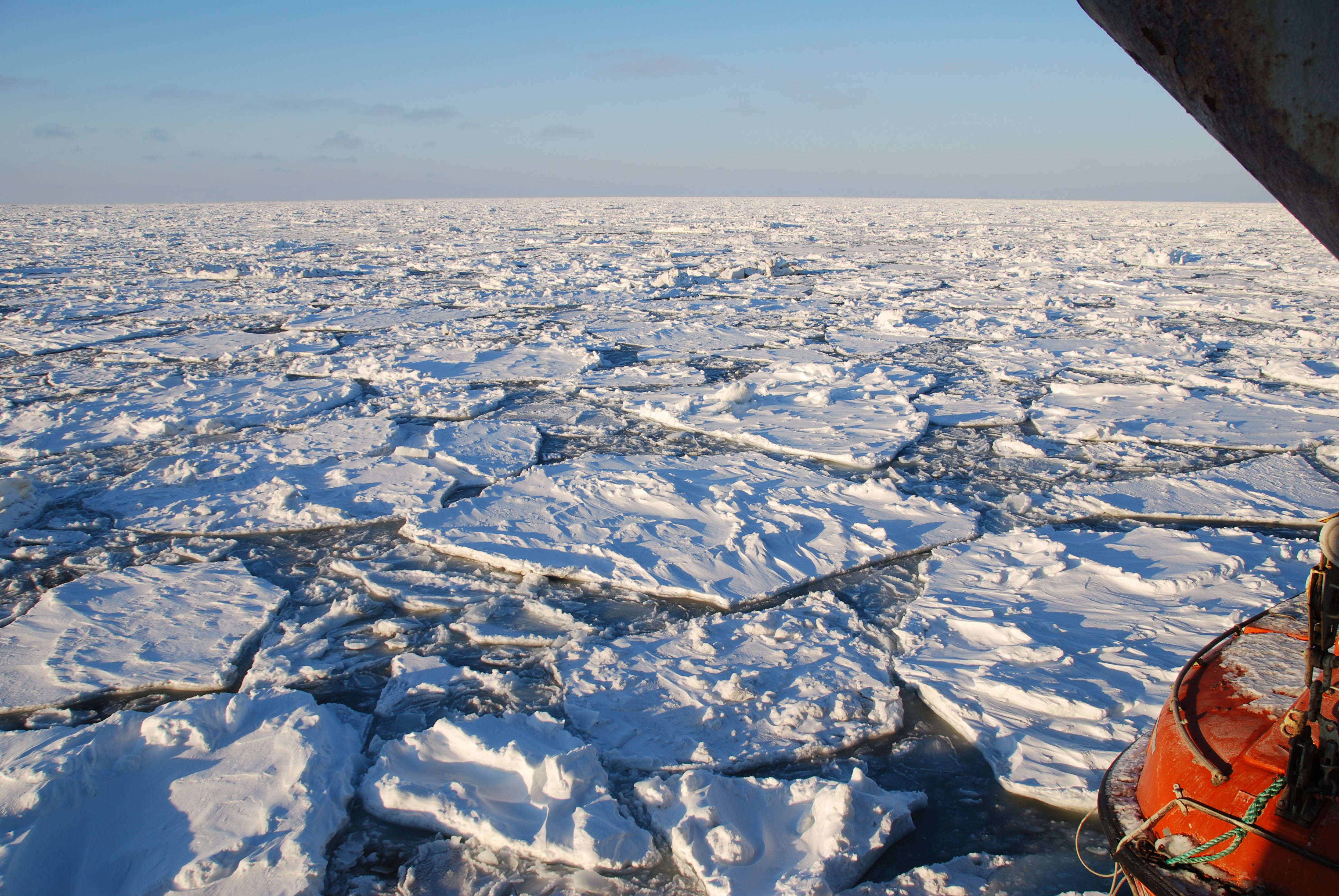 Thin Arctic sea ice