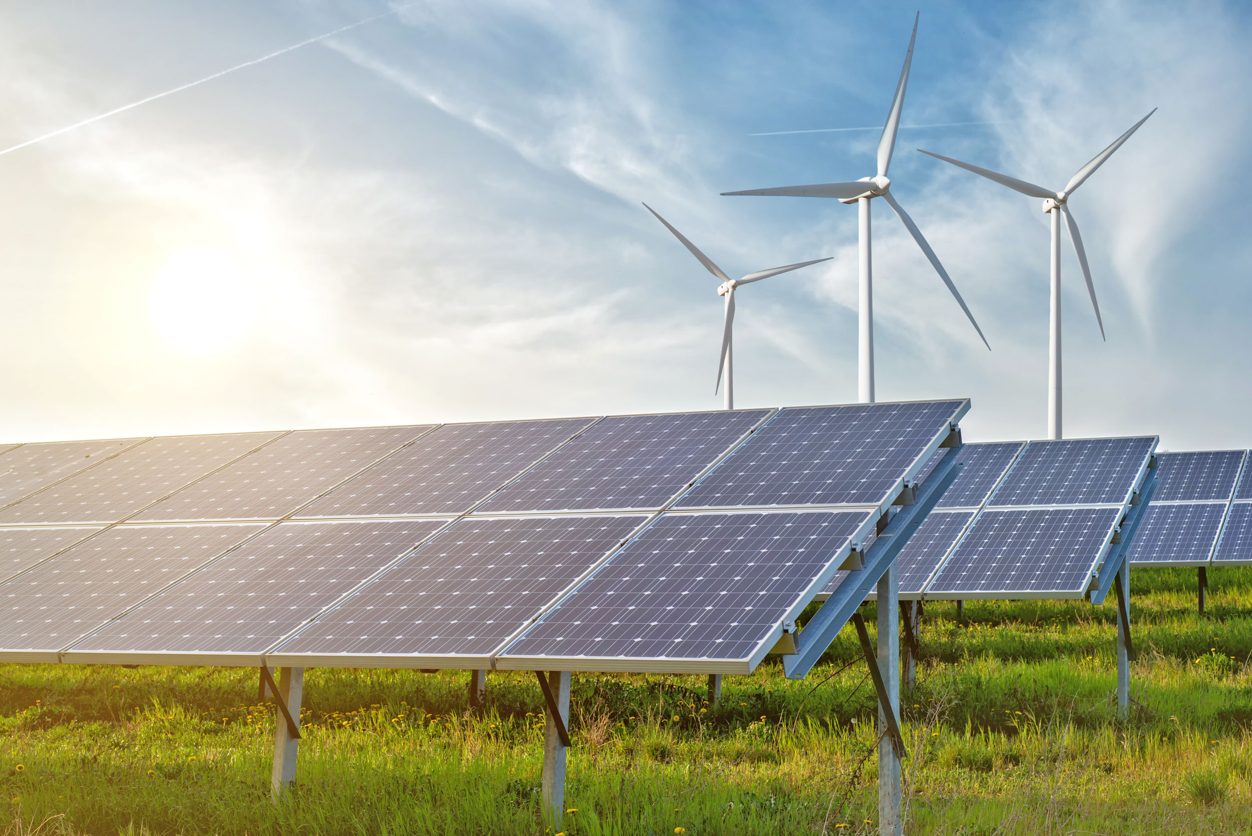 Green energy supporters stand strong in the face of Trump's future