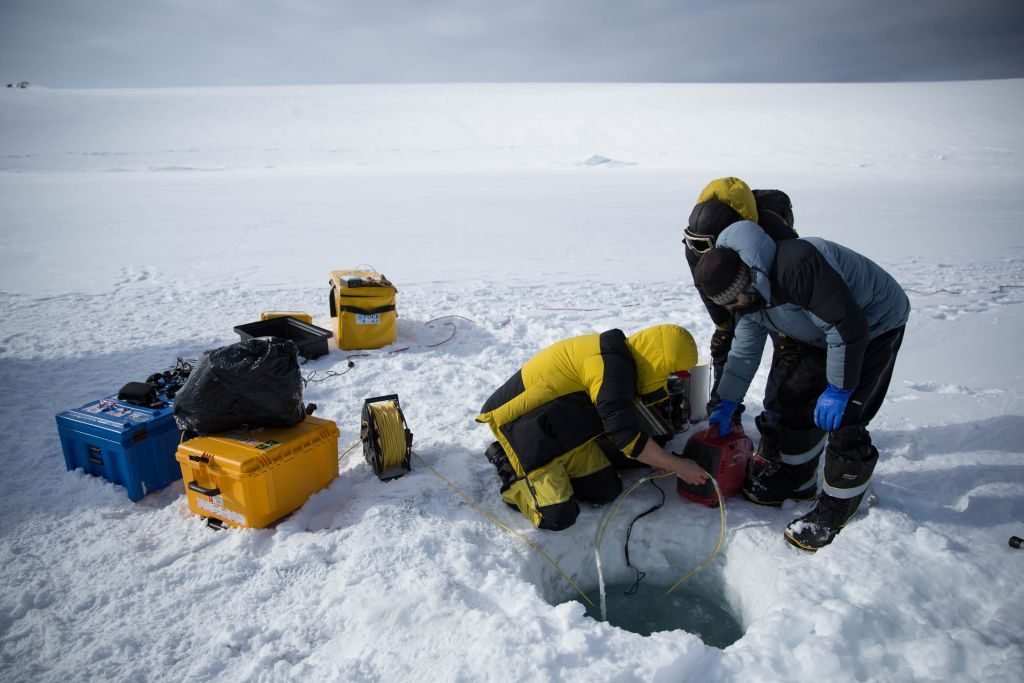 Scientists drilled holes in the sea ice to lower a Remotely Operated Vehicle (ROV) into the water.