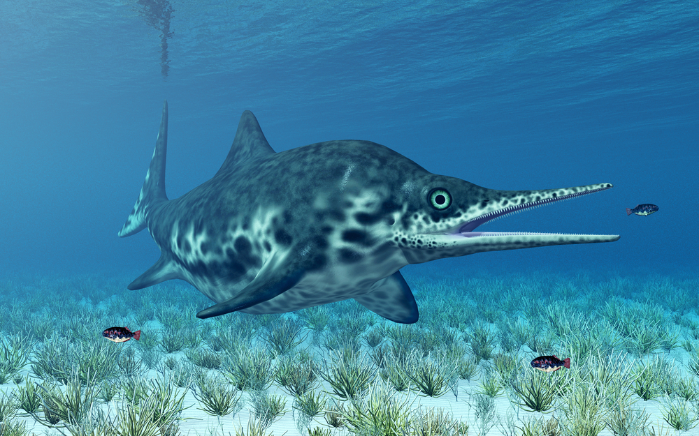 The dolphin-like ichthyosaur once swam in oceans that once covered most of Texas. A 92-million-year-old fossil from South Texas could be the remains of one of the creatures.