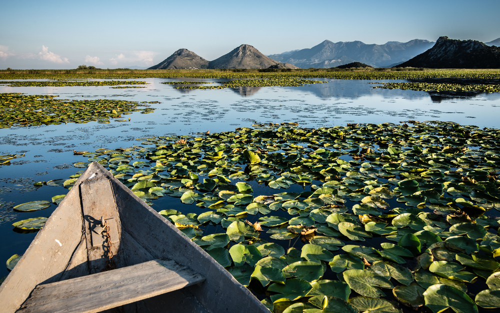 Environmentalists are up in arms about Port Skadar Lake, a 600-guest, eco-tourist resort to be constructed in Lake Skadar National Park.