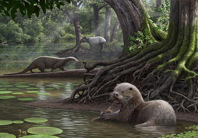 An international team of researchers have discovered the fossils of a wolf-sized ancient otter species that roamed the Earth 6 million years ago.