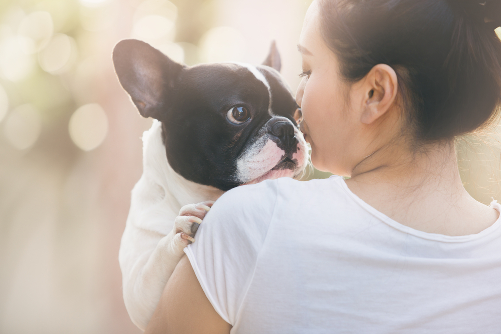Doggy emotions may mirror their owners. It's common pet owner folklore that after many years together, people begin to resemble their dogs – or is it vice versa?