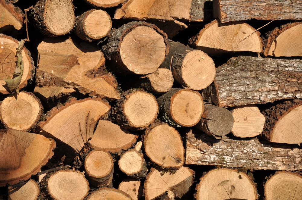 Is the burning of woody biomass for energy really always more environment-friendly than the use of fossil fuels for electricity generation and heat?