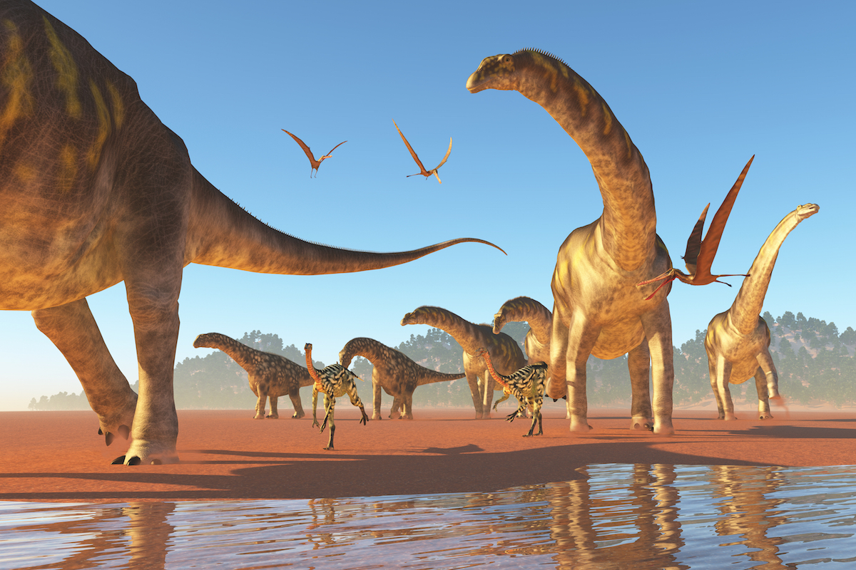 Poop can be an exciting discovery when it's 180 million-year-old dinosaur poop fossils from a newly discovered dino species.