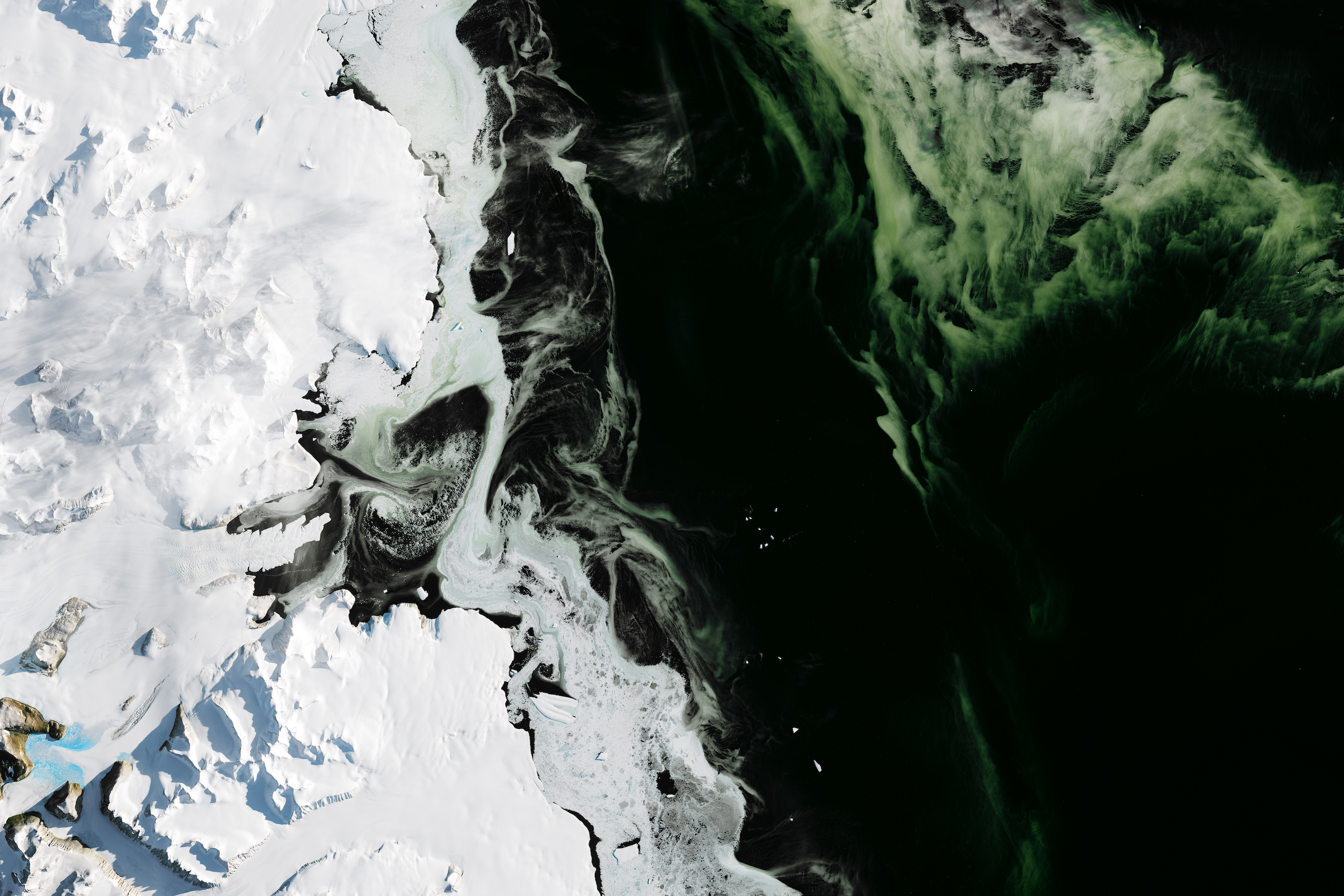 Today's Image of the Day features a beautiful emerald green effect swirling through the waters off the coast of Antarctica's Granite Harbor.