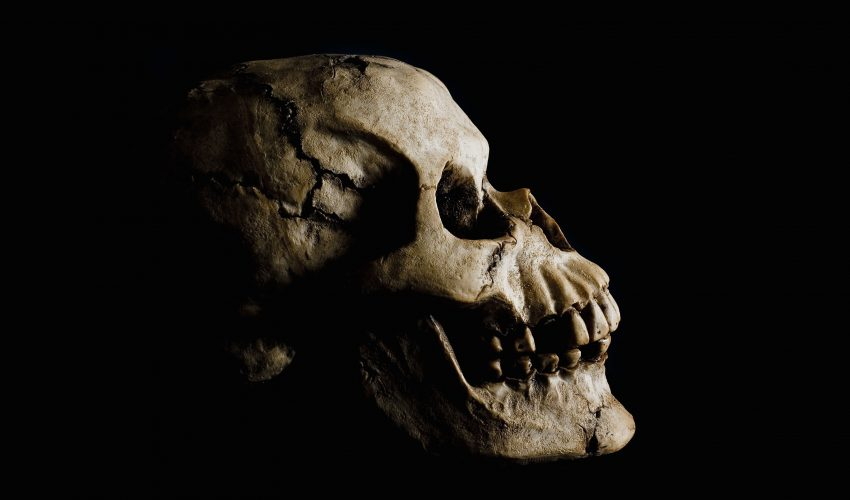An team of archeologists walked into a cave in 2014 and came out with a 400,000-year-old skull, the oldest human cranium fossil ever found in Portugal.