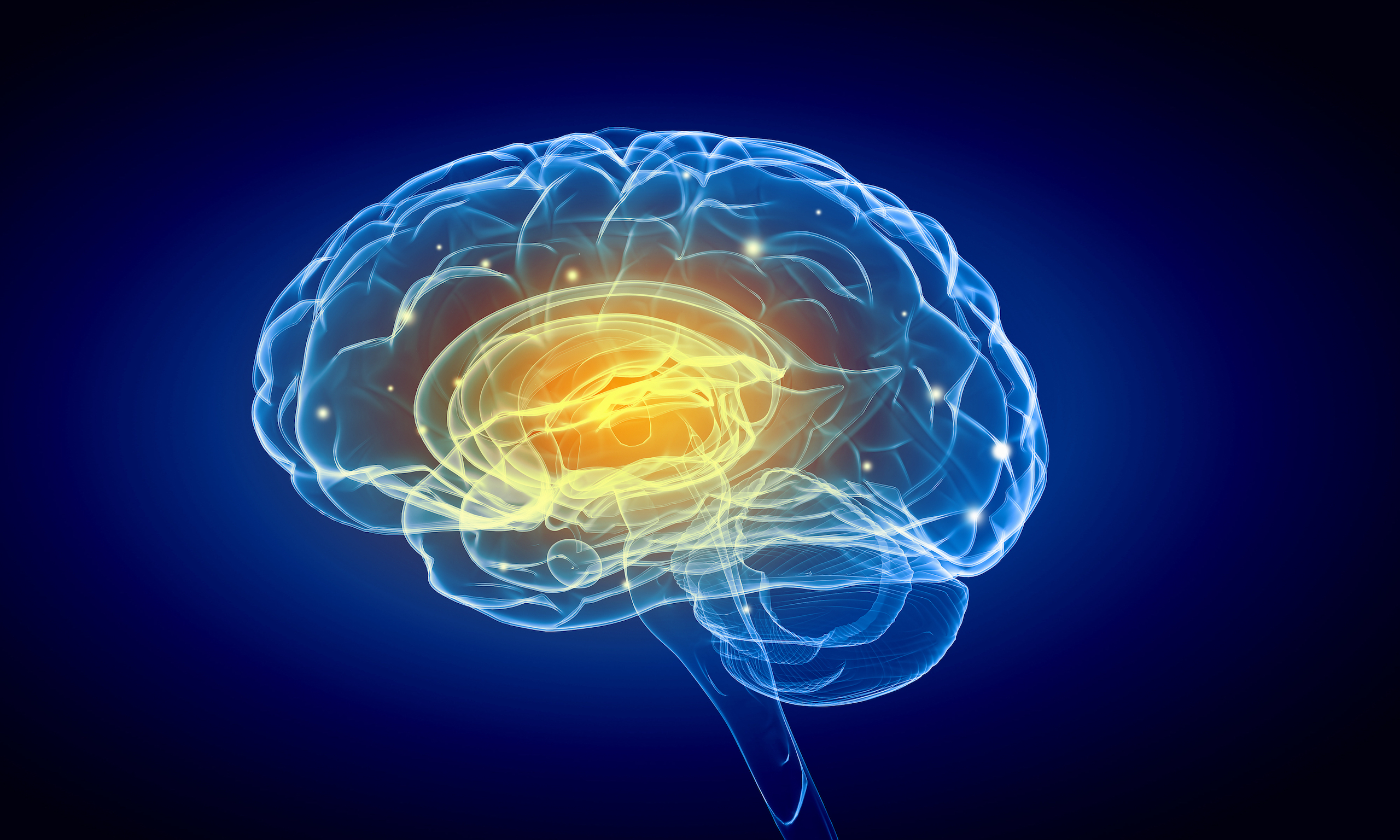 In a new study, scientists found that the brains of those who are born blind are able to make new connections due to their lack of visual information.