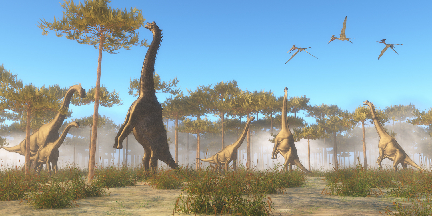 Paleontologists from the University of Cambridge in England are proposing the possibility that the dinosaur classification system needs to be shaken up.