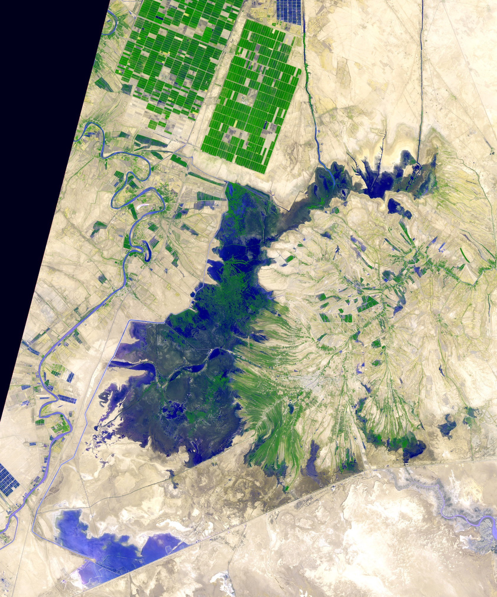Today's Image of the Day comes from the NASA Earth Observatory and features a satellite image of the Shadegan Pond in Iran.