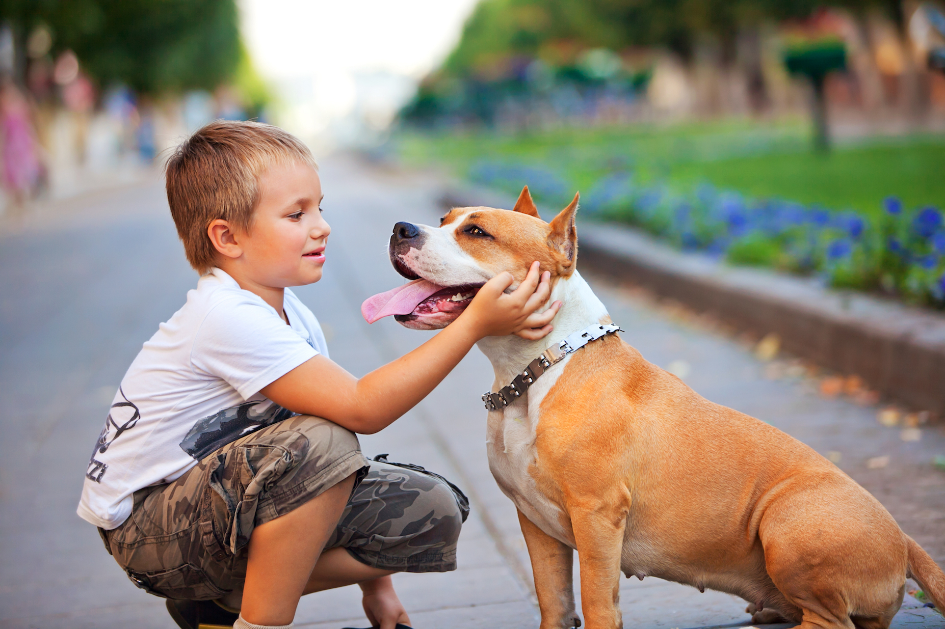 According to a new study, if you have a dog around your very young children, it could increase their levels of good bacteria.