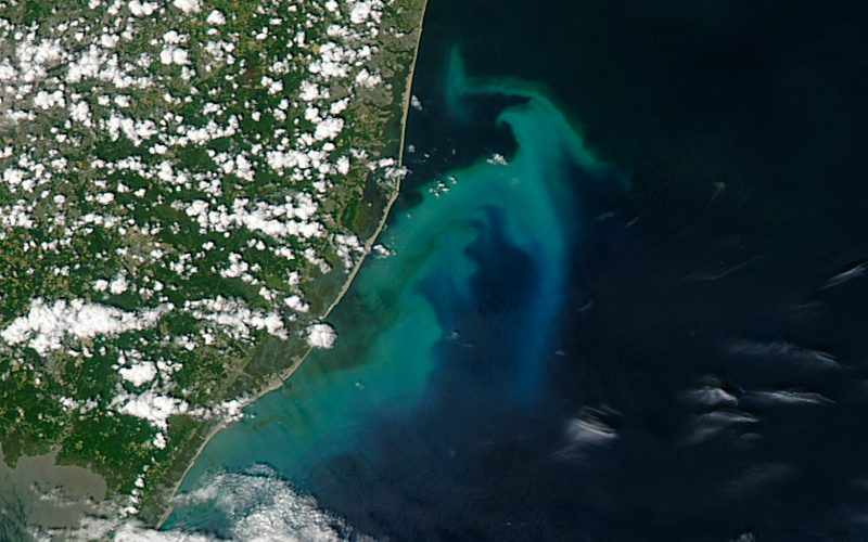 Today's Image of the Day comes courtesy of the NASA Earth Observatory and features a look at a phytoplankton bloom off the coast of New Jersey.