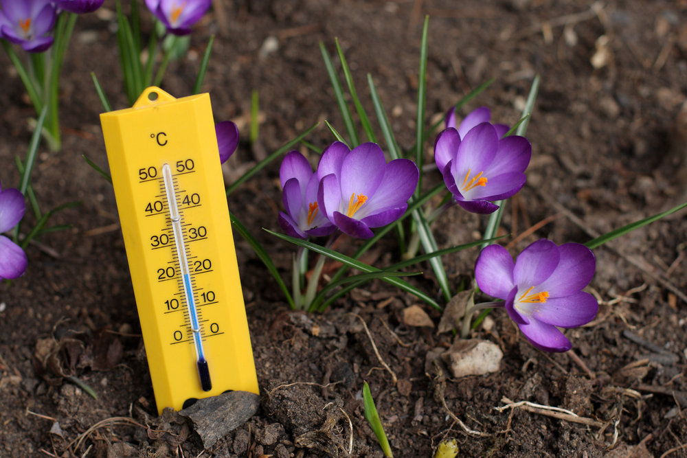 Following global trends, spring temperatures are on the rise in the UK.