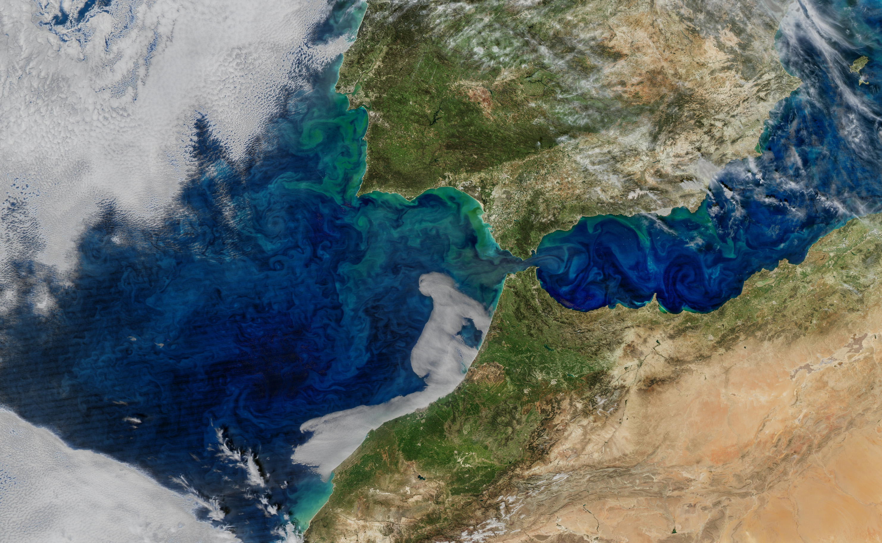 Today's Image of the Day comes courtesy of the NASA Earth Observatory and features a look at phytoplankton blooms off the coast of Spain.