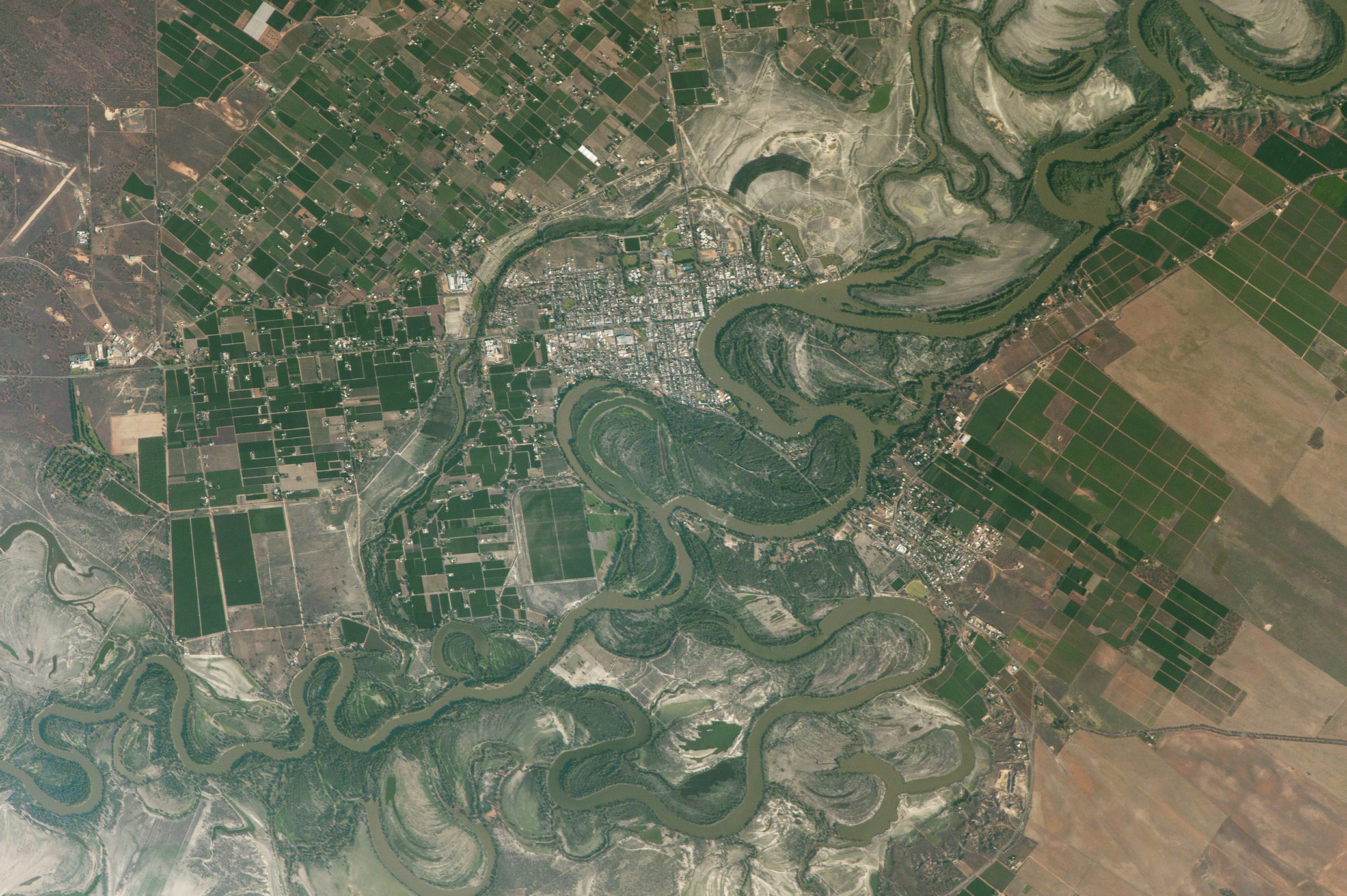 Today's image comes thanks to the NASA Earth Observatory and features a look at the agricultural fields of the Murray River valley in South Australia.