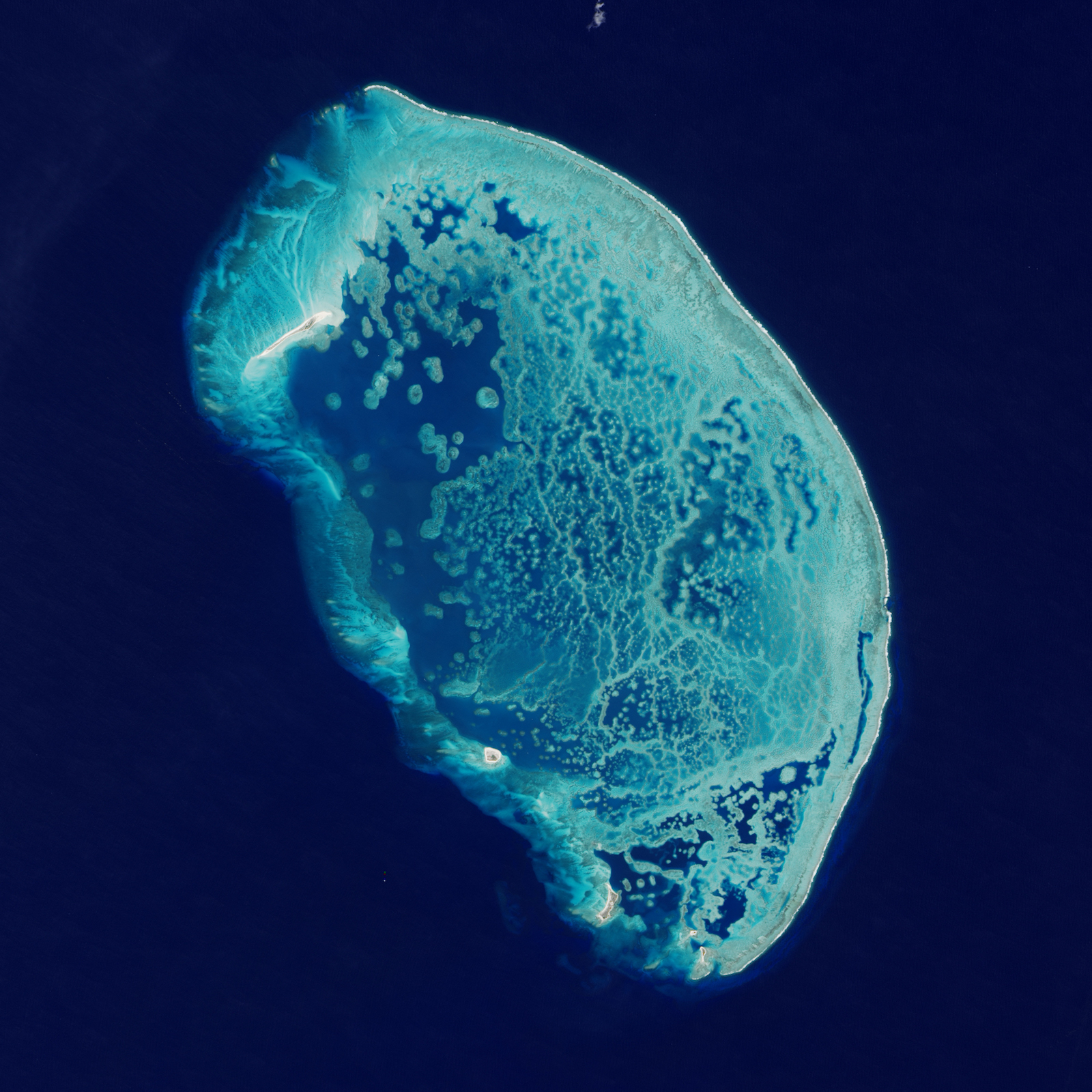 Today's Image of the Day features a look at Arrecife Alacranes, otherwise known as the Scorpion reef of the southern Gulf of Mexico.