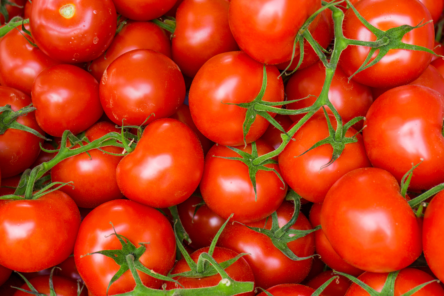 Researchers have found a way to use two formerly detrimental genes in tomatoes to actually work together and increase yield.