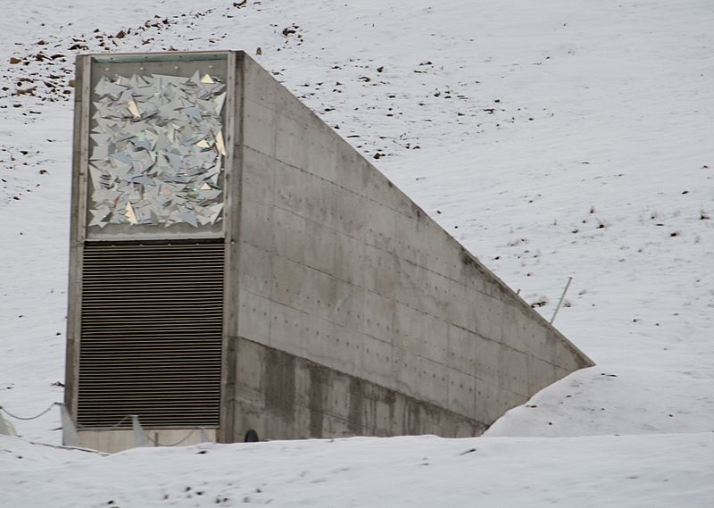 The Svalbard Global Seed Vault was flooded by melting permafrost after abnormally warm weather in the Arctic.
