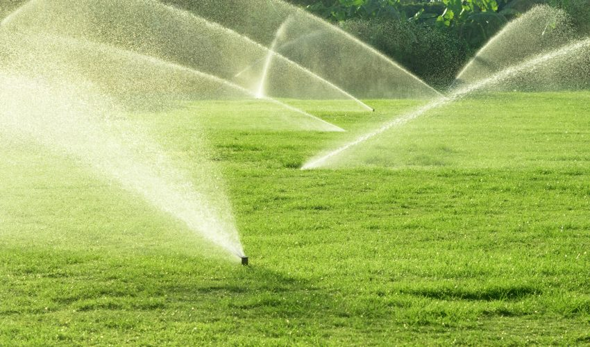 The over watering of lawns caused Los Angeles to lose 100 gallons of water per person per day to the atmosphere in the summer of 2010.