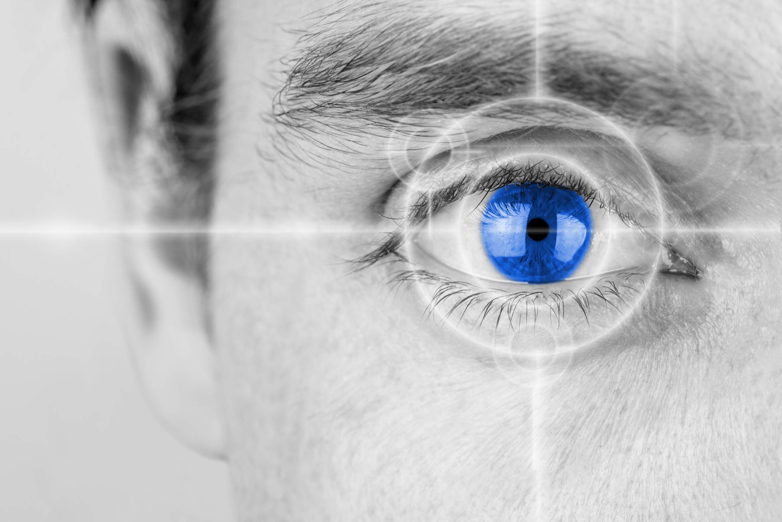 The portion of the brain that processes vision continues to develop into a person's late 30s and 40s, a new study found.
