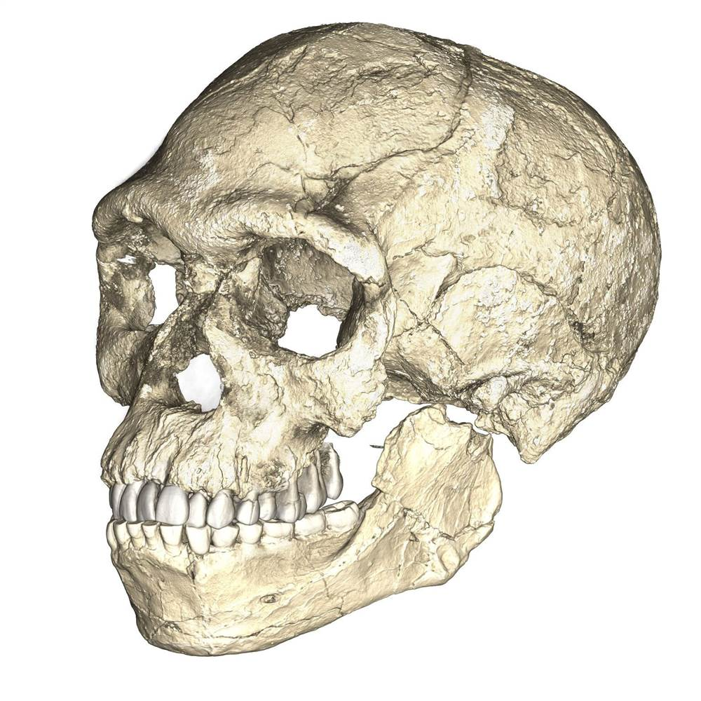 300,000 year-old human fossils have been discovered in Morocco, pushing back evidence of human existence by 100,000 years.
