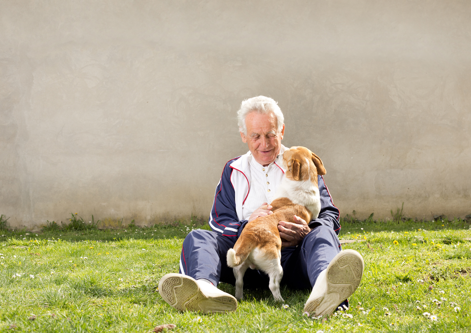 Owning a dog may help keep older adults more physically active and meet physical activity requirements, according to a new study.