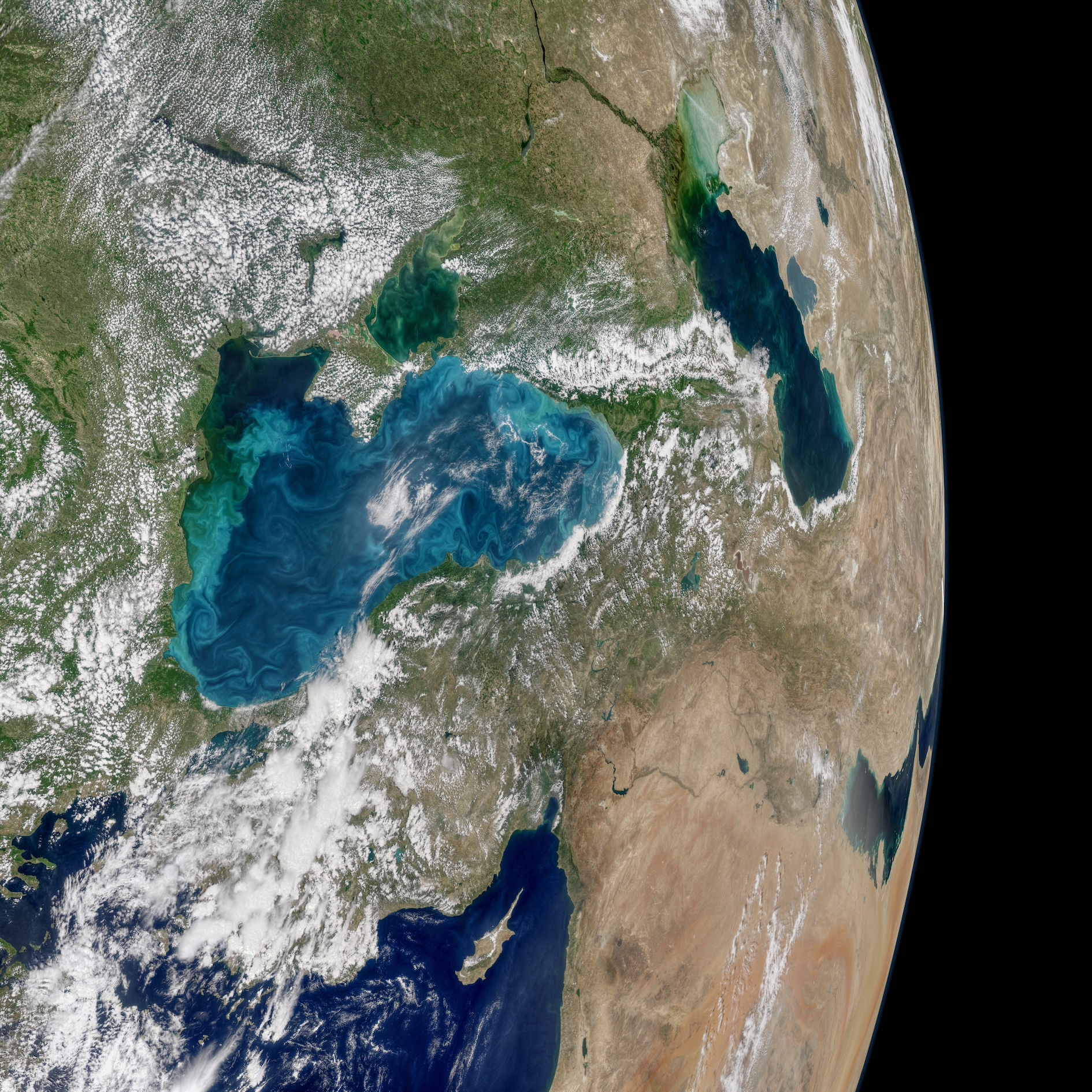 Today's Image of the Day comes thanks to the NASA Earth Observatory and features a look at phytoplankton swirls in the Black Sea.