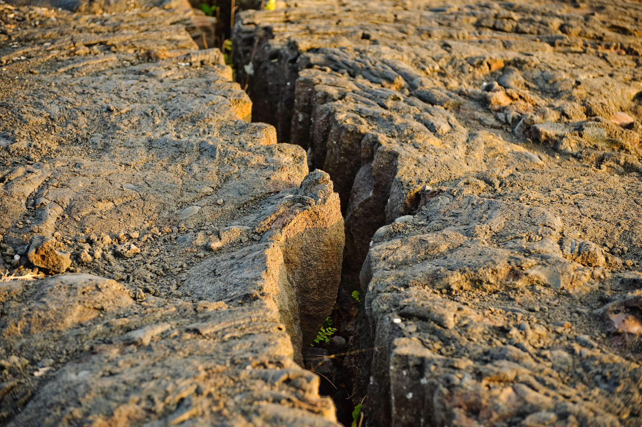 A new study reveals how strike-slip faults form in the Earth's crust, as two tectonic plates slide past one another, generating earthquakes.
