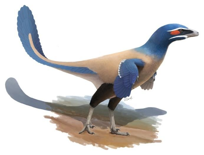 A new species of dinosaur has been identified by Canadian scientists and named after esteemed paleontologist Philip J. Currie.